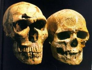 Neanderthal-Cro-Magnon